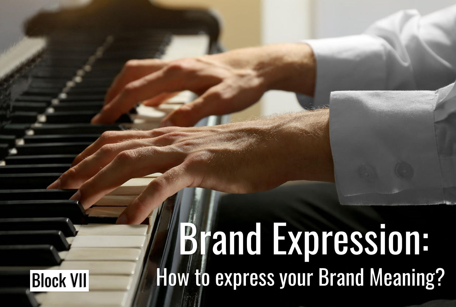 The Brand-Self-Seven Brand Identity Planning Model: Brand Expression